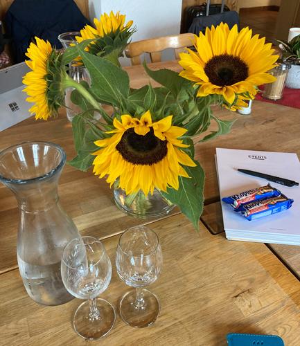Sonnenblumen Strategiemeeting KI